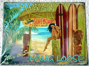 Metallschild - Hang Loose - Bar girl-Come to Hawaii 40,5cm x 30cm